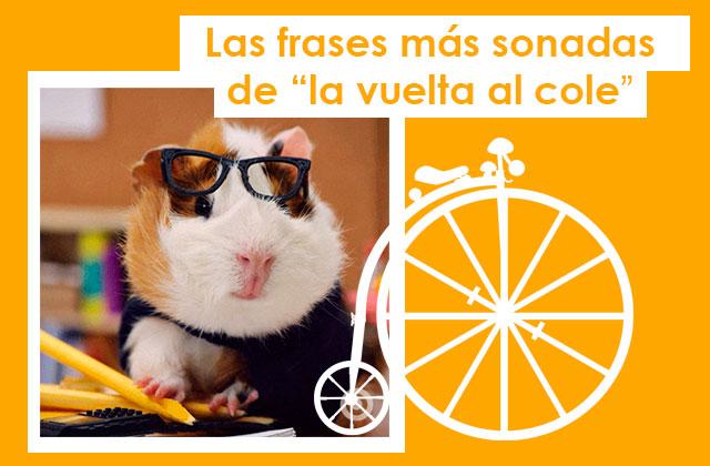 Frases Típicas De Vuelta Al Cole Tokapp